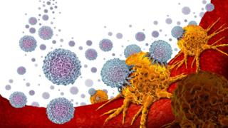 Immunotherapy offers hope for men with prostate cancer – BBC News